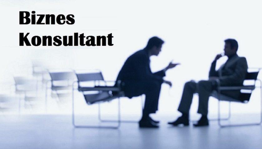 business-consultant1
